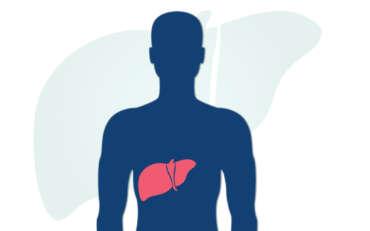 28 de Julio – Día Mundial de la Hepatitis